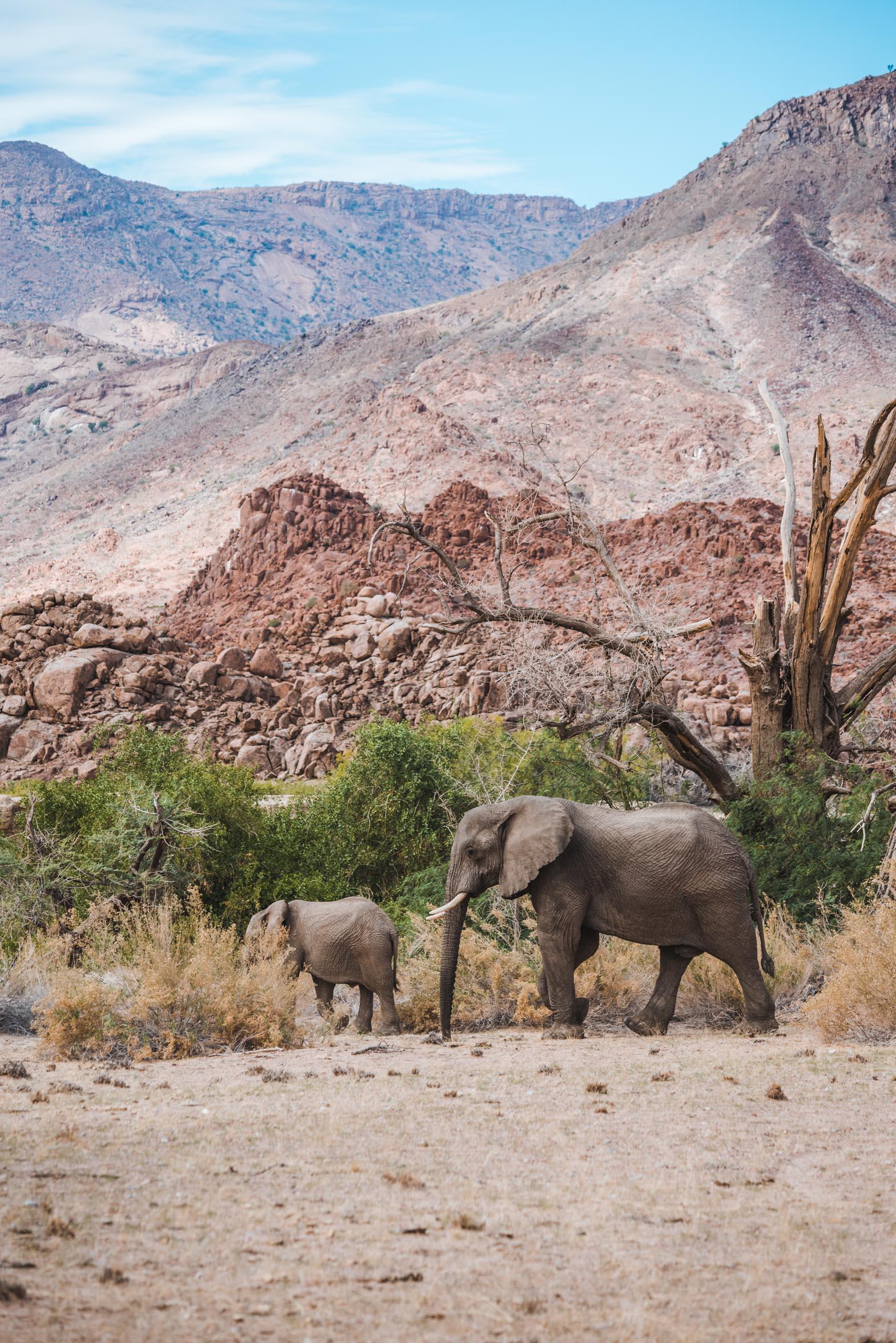 NAMIBIA-3356.jpg