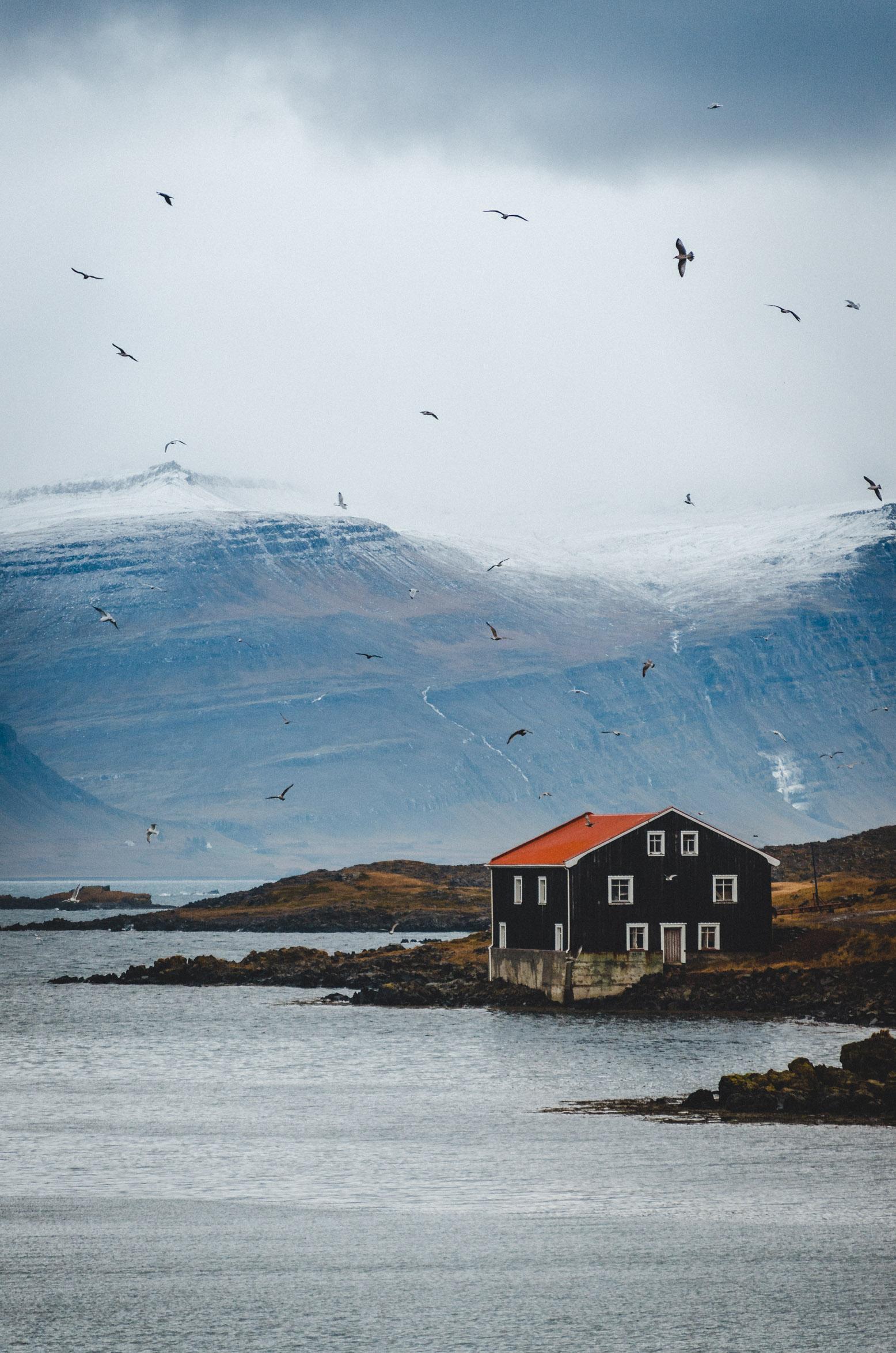 ICELAND-5560.jpg