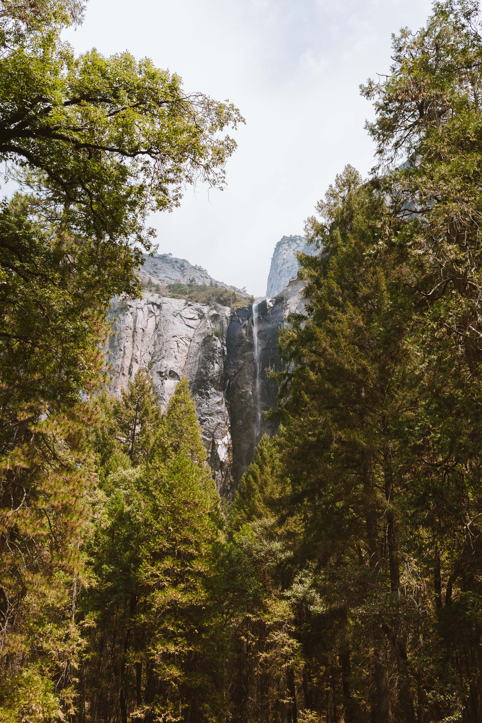 20160820_20160821_YOSEMITE_NATIONAL_PARK-4.jpg