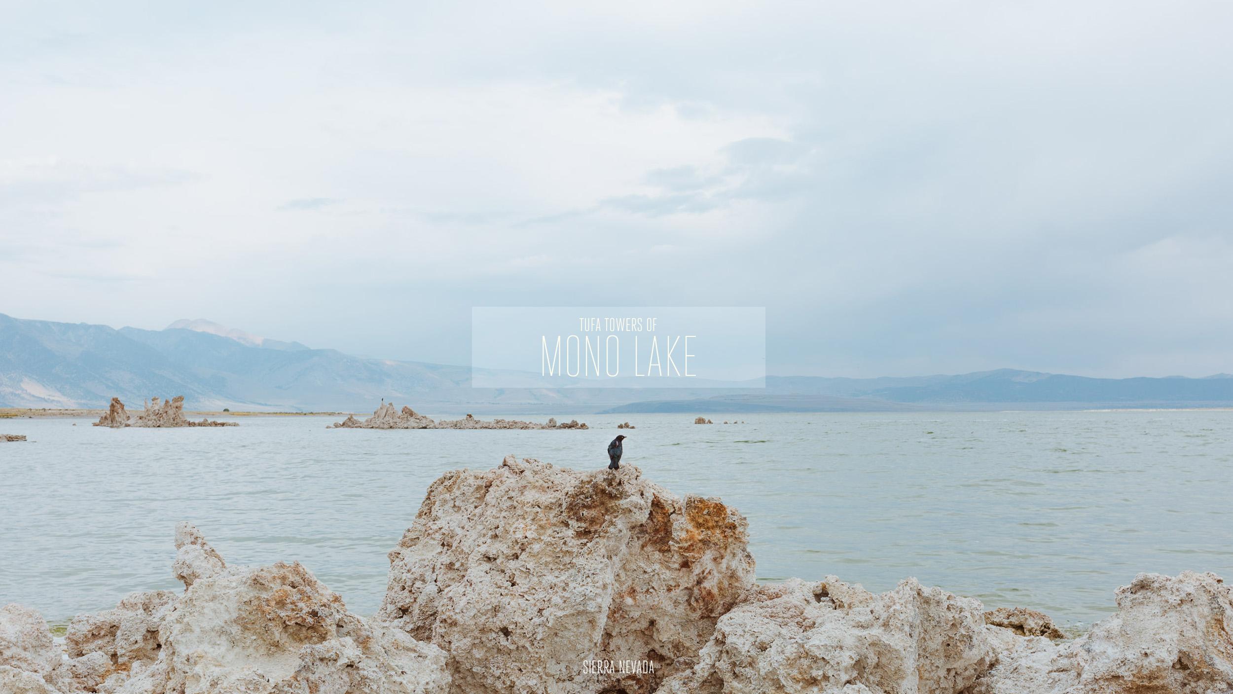 20160821_20160822_MONO_LAKE-COVER.jpg