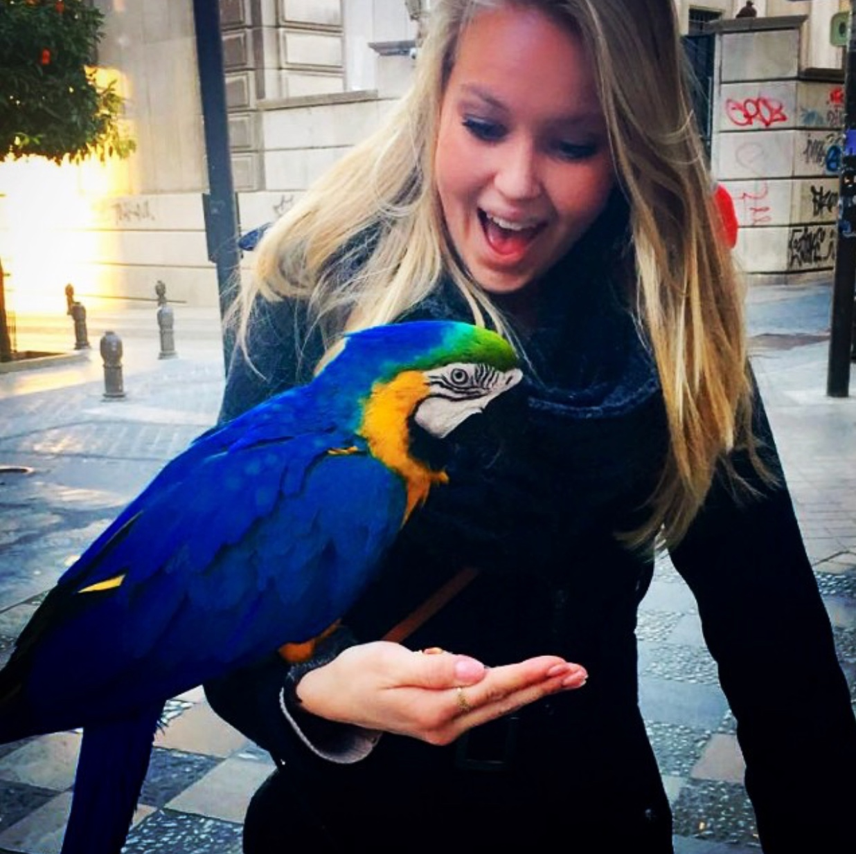 Katie makes a new friend at a Moroccan street market in southern Spain