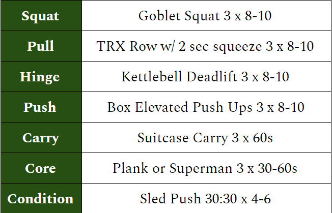 Lizard's Sample Workout. The majority of our training was a variation or progression of these movements.