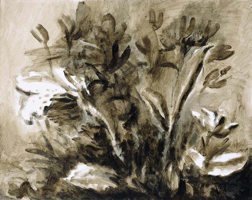 Black Flowers II
