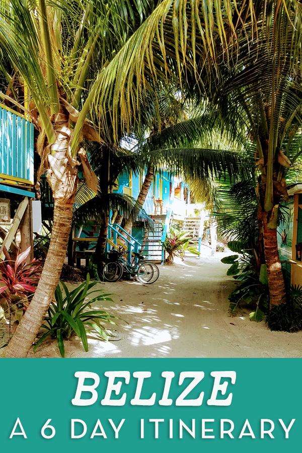 What I saw and did in 6 days in Belize, from Mayan temple tours and jungle visits in San Ignacio to snorkel trips and our hotel in Caye Caulker #belize #travel #cayecaulker