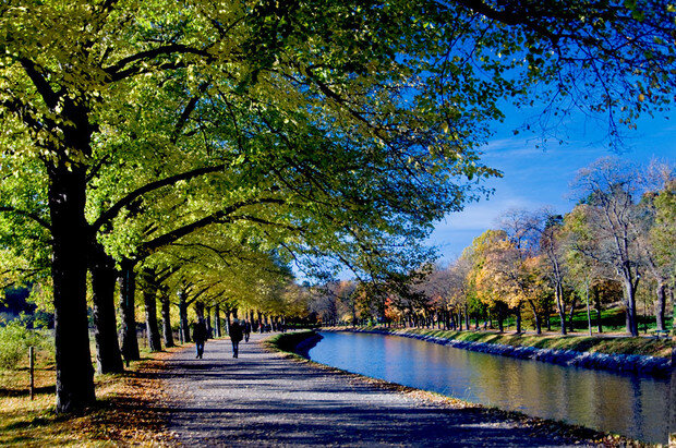 Canal walk/bike path in Djurgarden in autumn