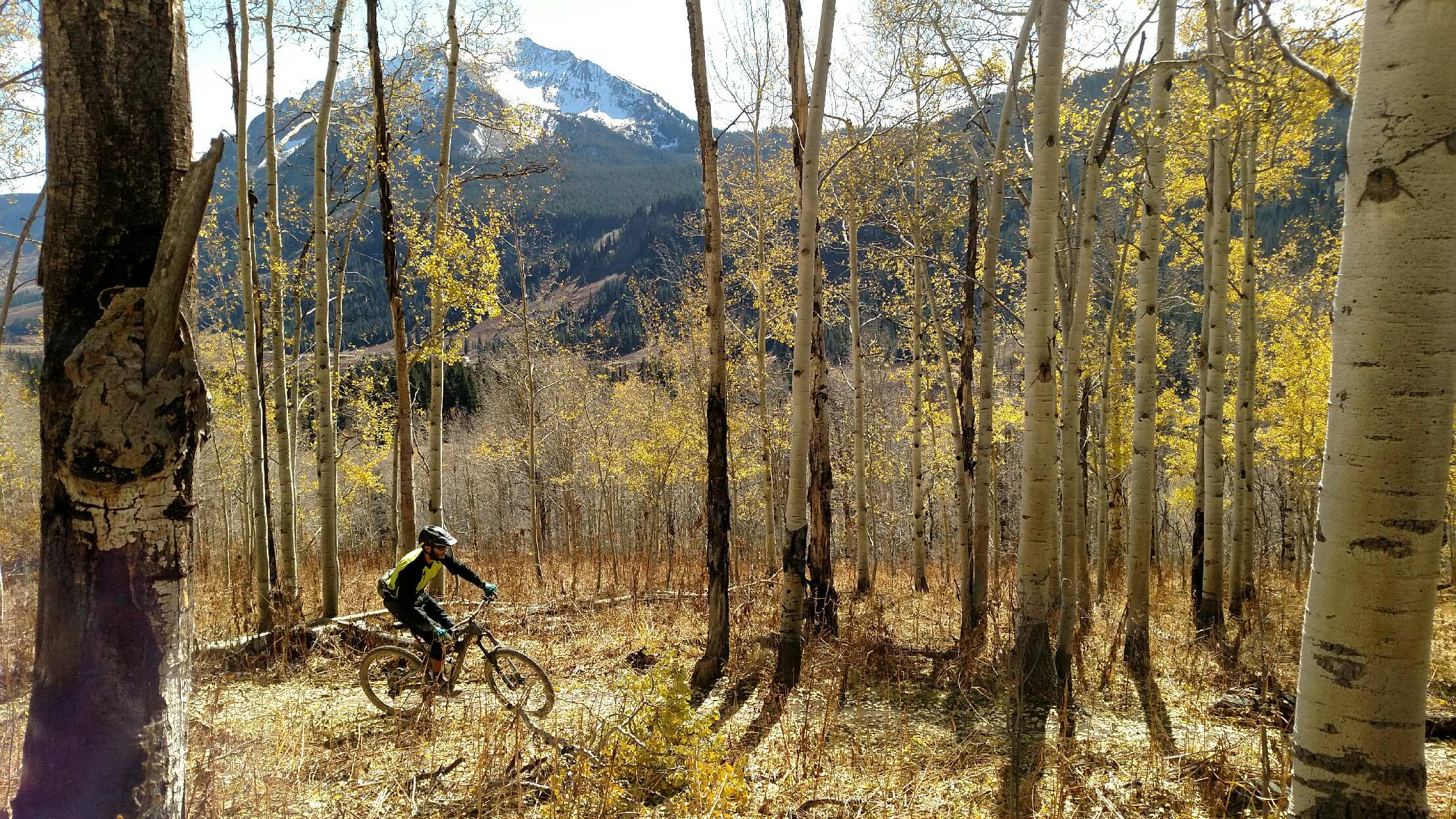 Crested Butte_trail 401.JPG