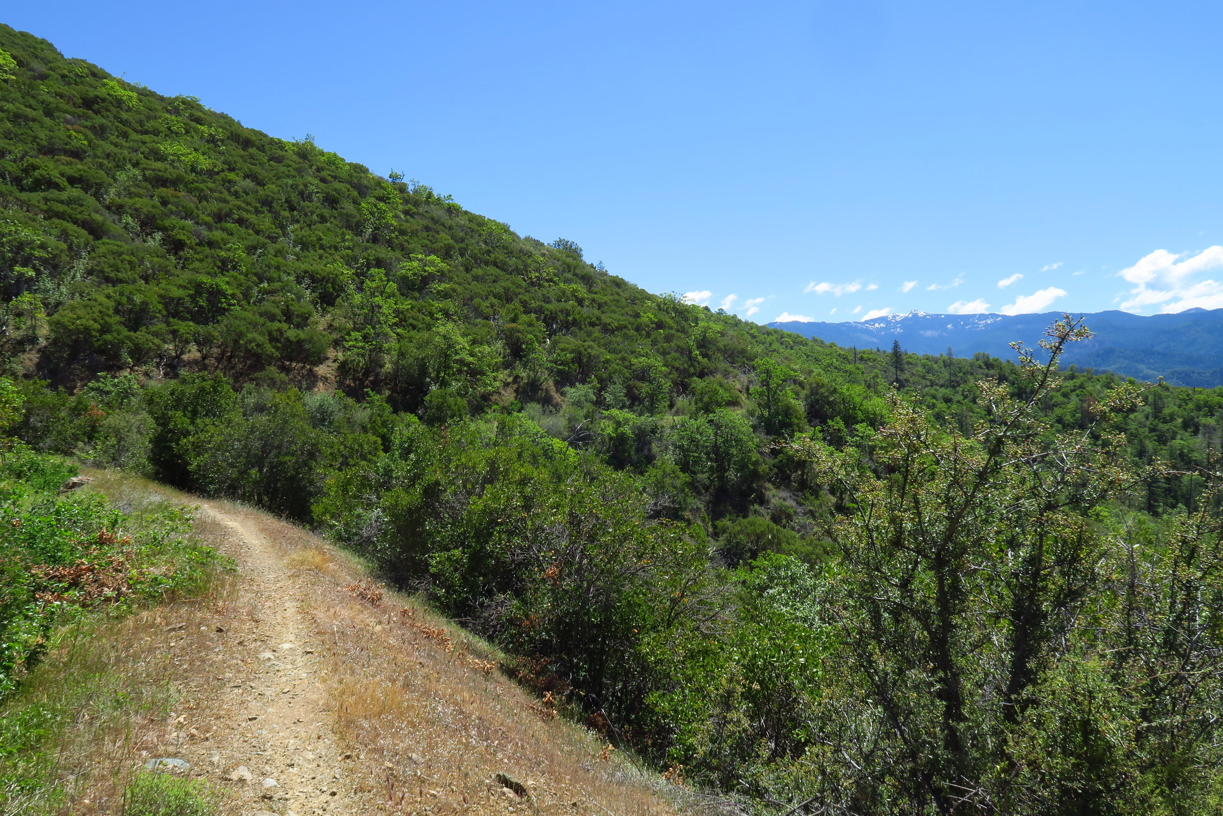The Sterling Mine ditch Trail spans ~25 miles.