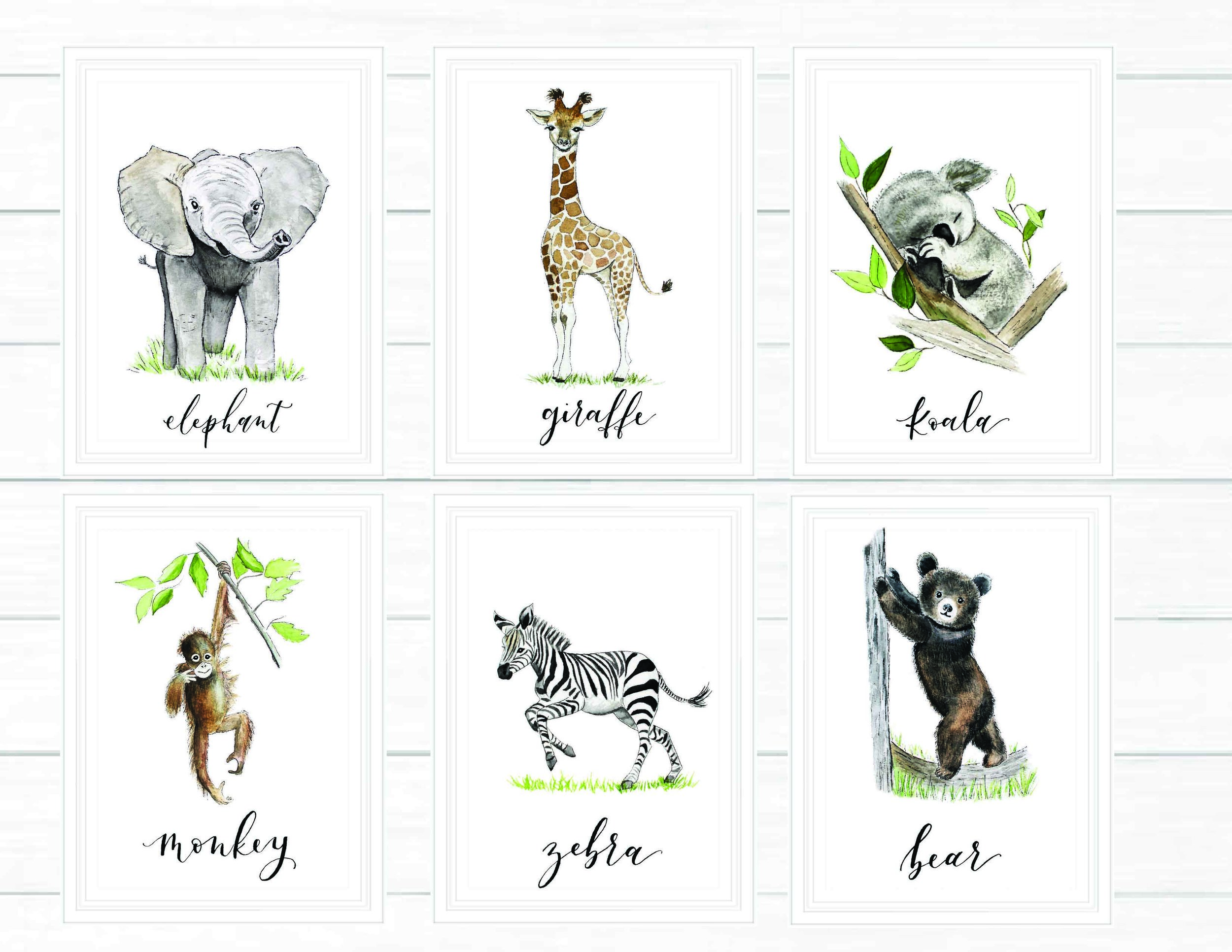 Baby Animals Nursery Collection