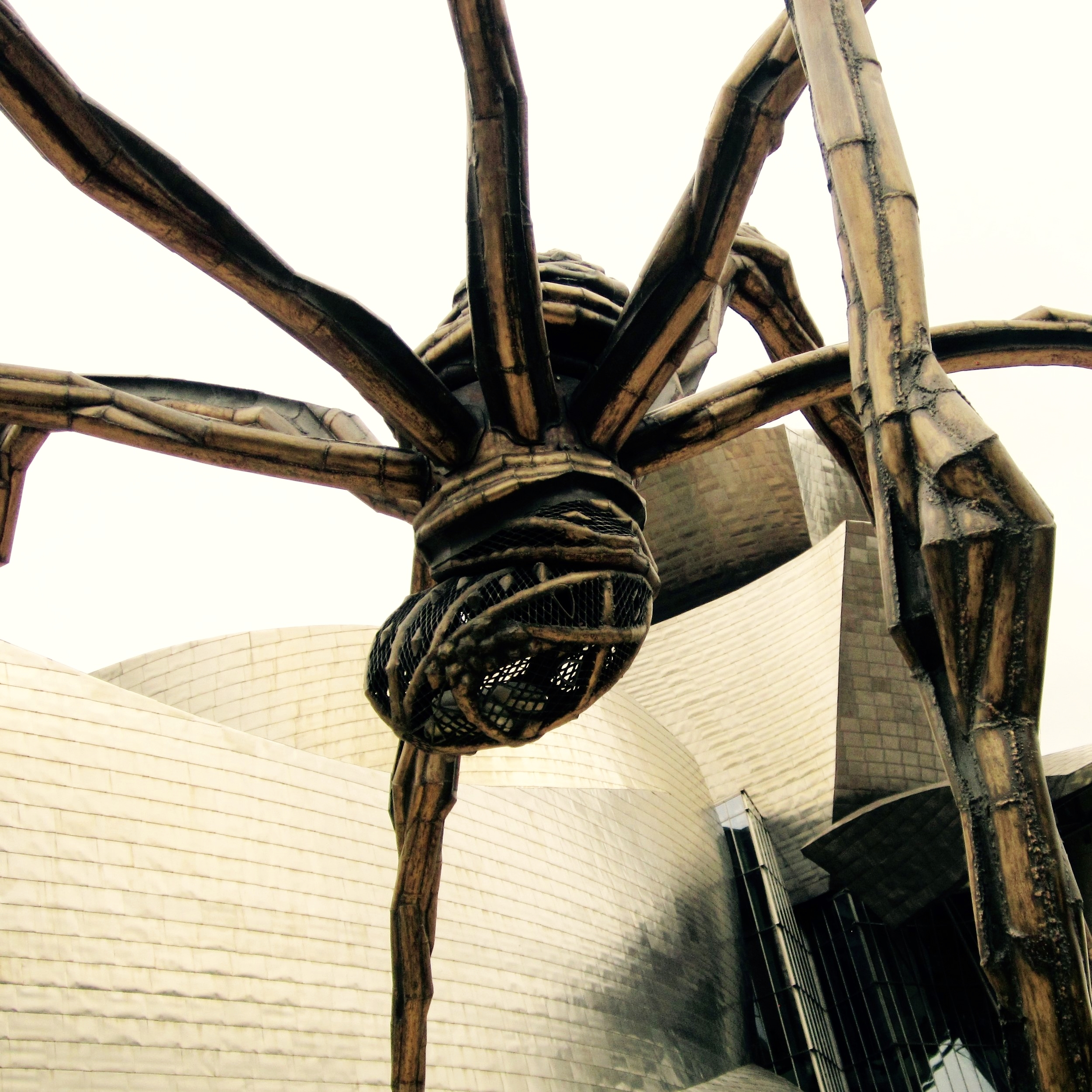 bourgeois spider