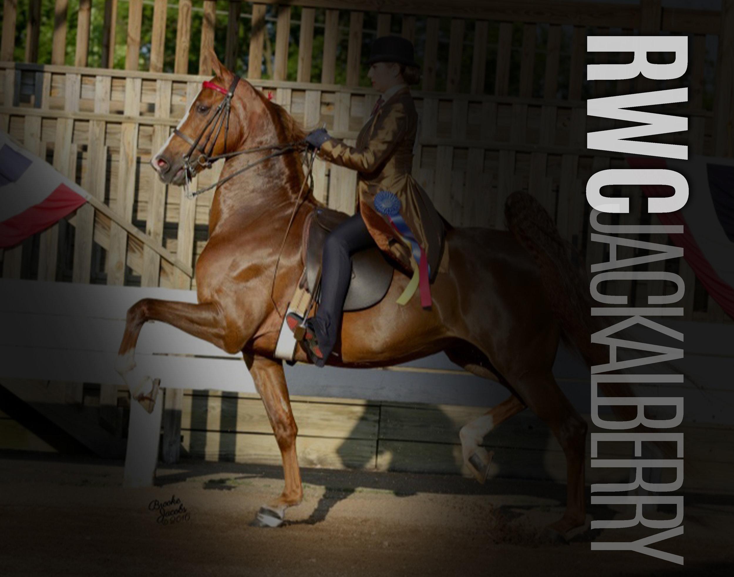 RWC Jackalberry.jpg