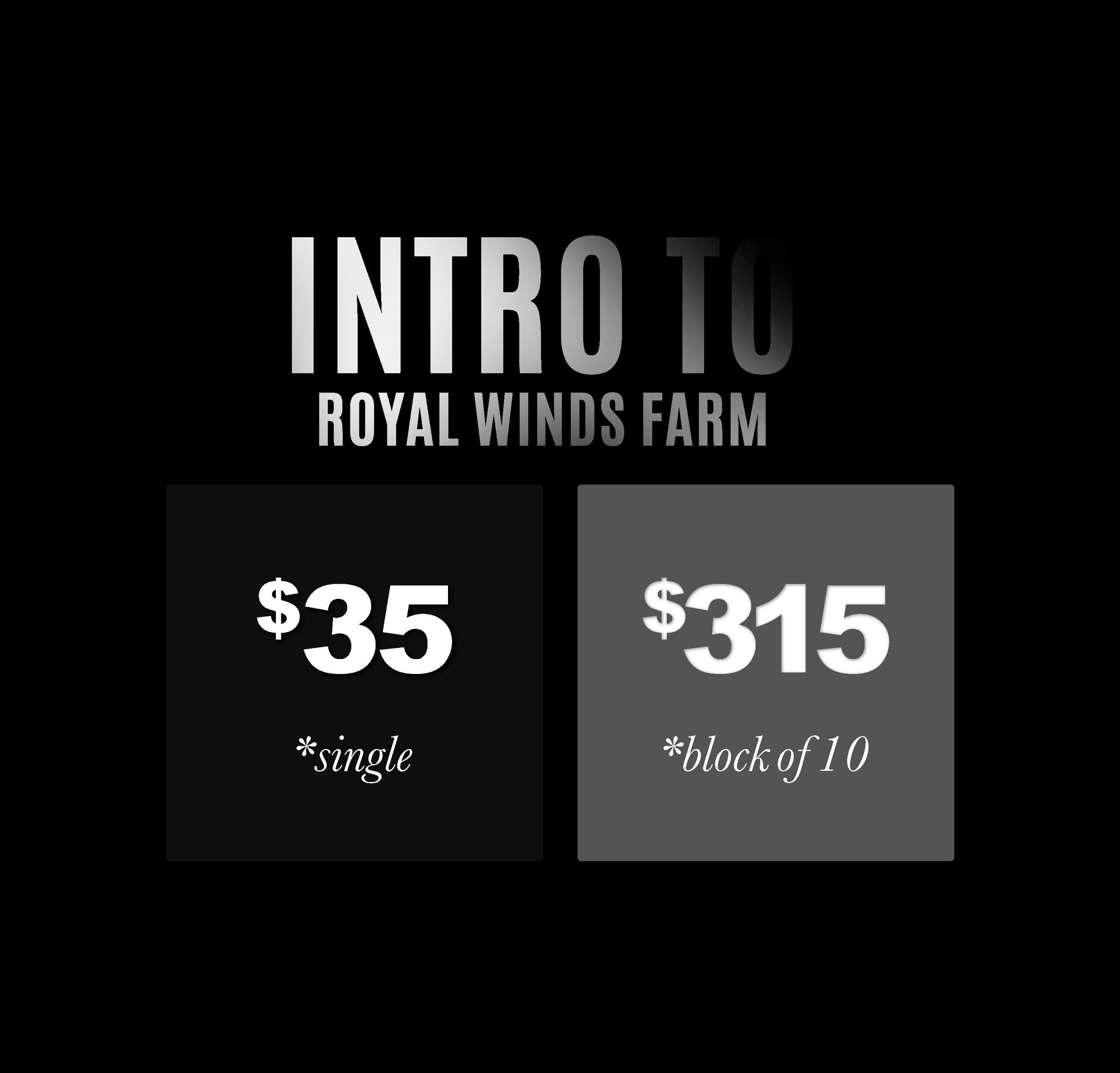 Intro to Royal Winds Farm is required for first time students. It focuses on Horsemanship through 30 minutes of riding time and 30 minutes of horse care and hands on experience.   Classes offered on Monday 5:00-6:00 PM, Wednesday 5:00-6:00PM and Sunday 2:00-4:00 PM.