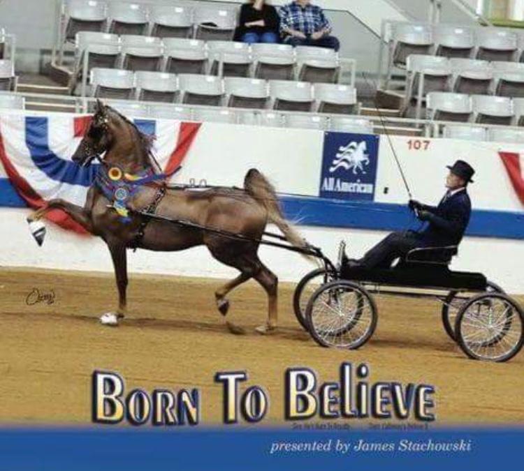 RWC BORN TO BELIEVE