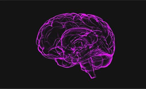 Screenshot_2019-04-23+alzheimer%27s+brain+-+Google+Search.jpg