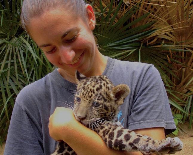 Belize Zoo Jaguar Cub - SS Size.jpeg