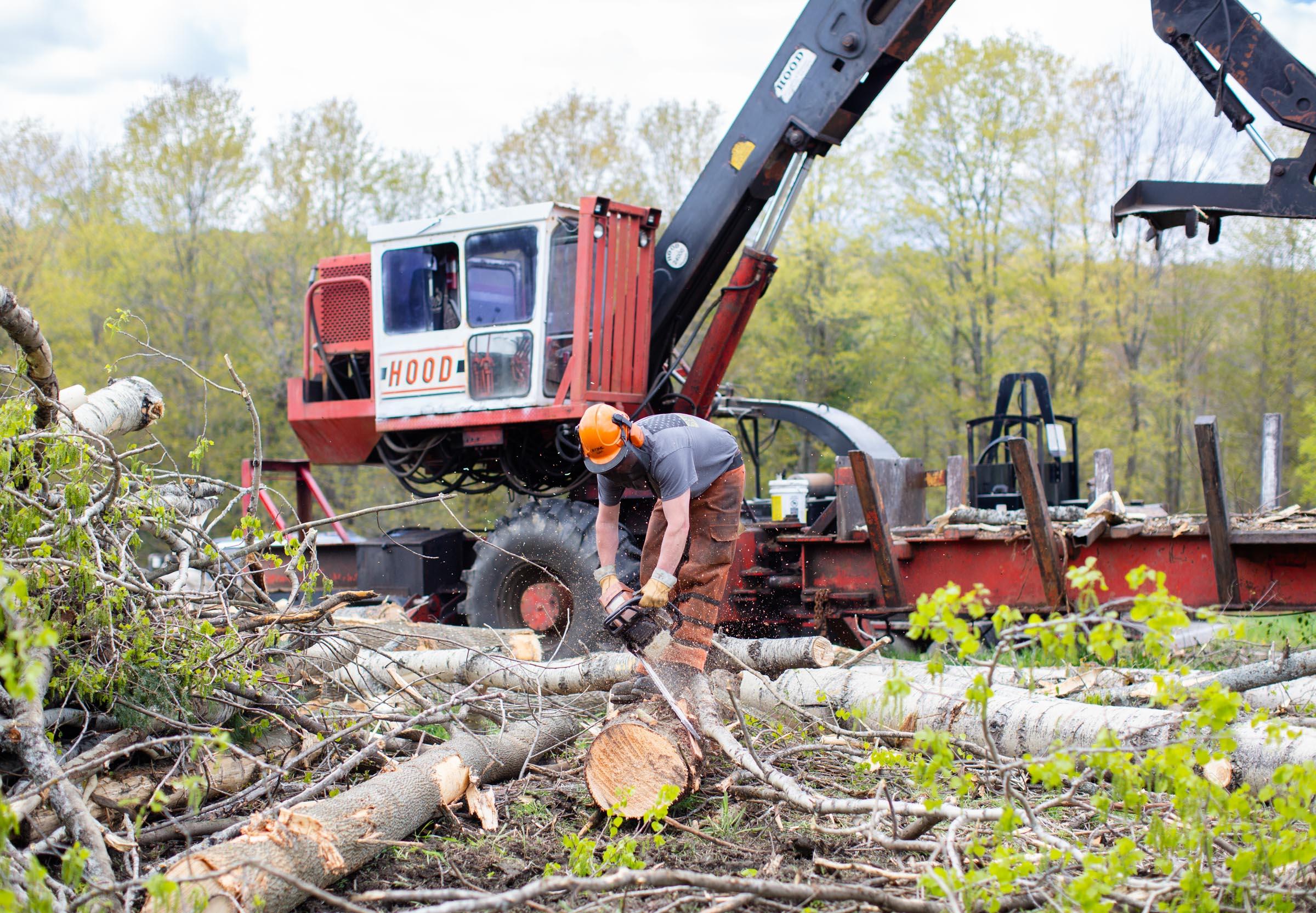 Vermont Glove Chainsaw