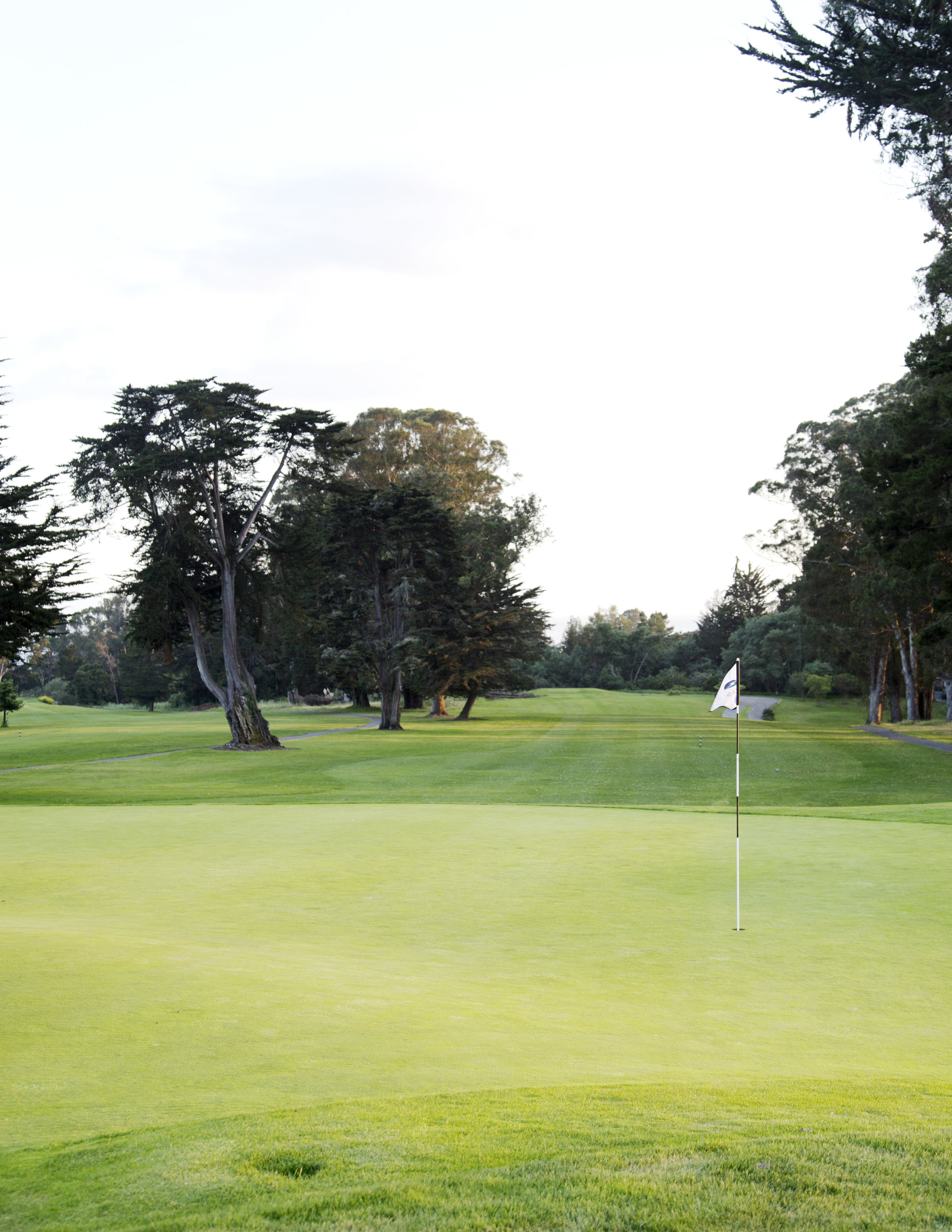 wetart golf photo.jpg