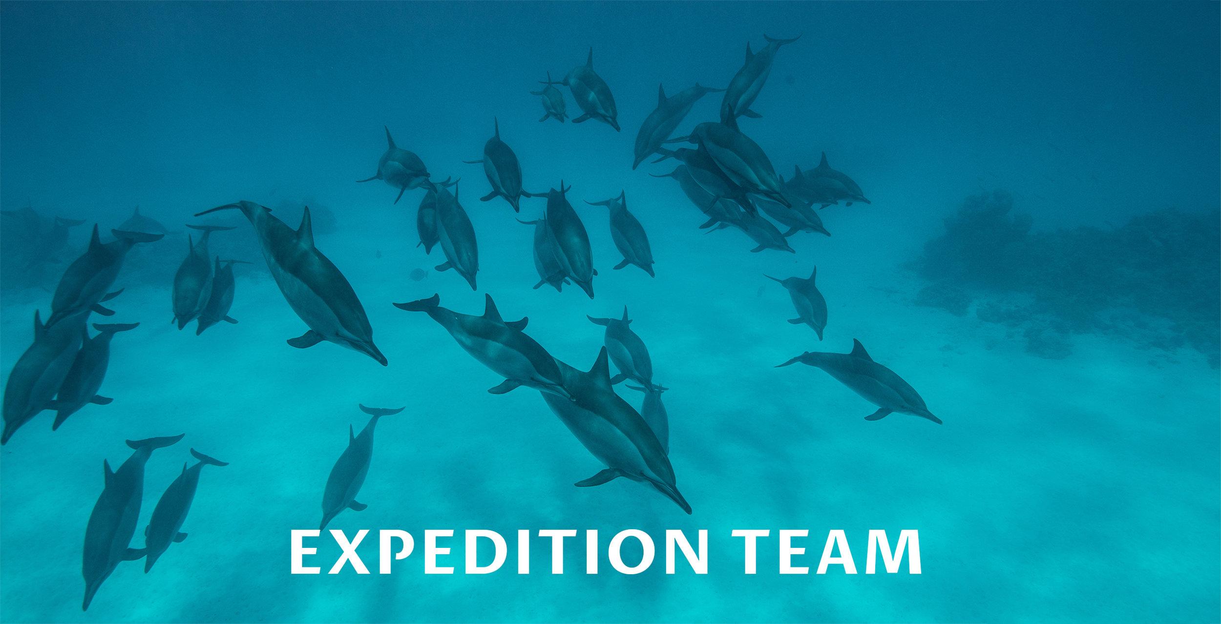 Team-.jpg