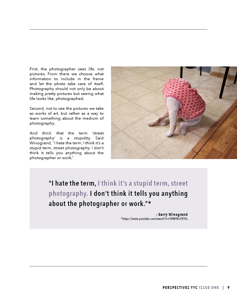 Perspectives YYC Issue One Alvin Spread4.jpg