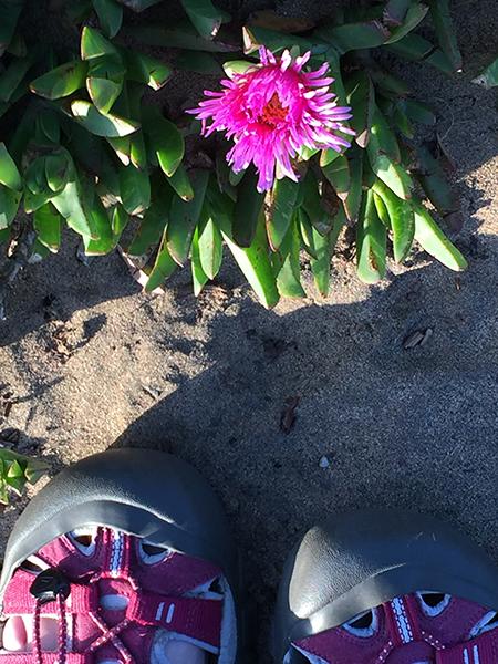 anne feet.jpg