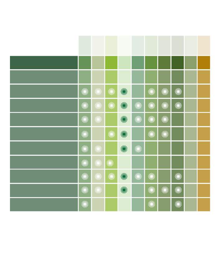 Matrix-Green-Anne.png