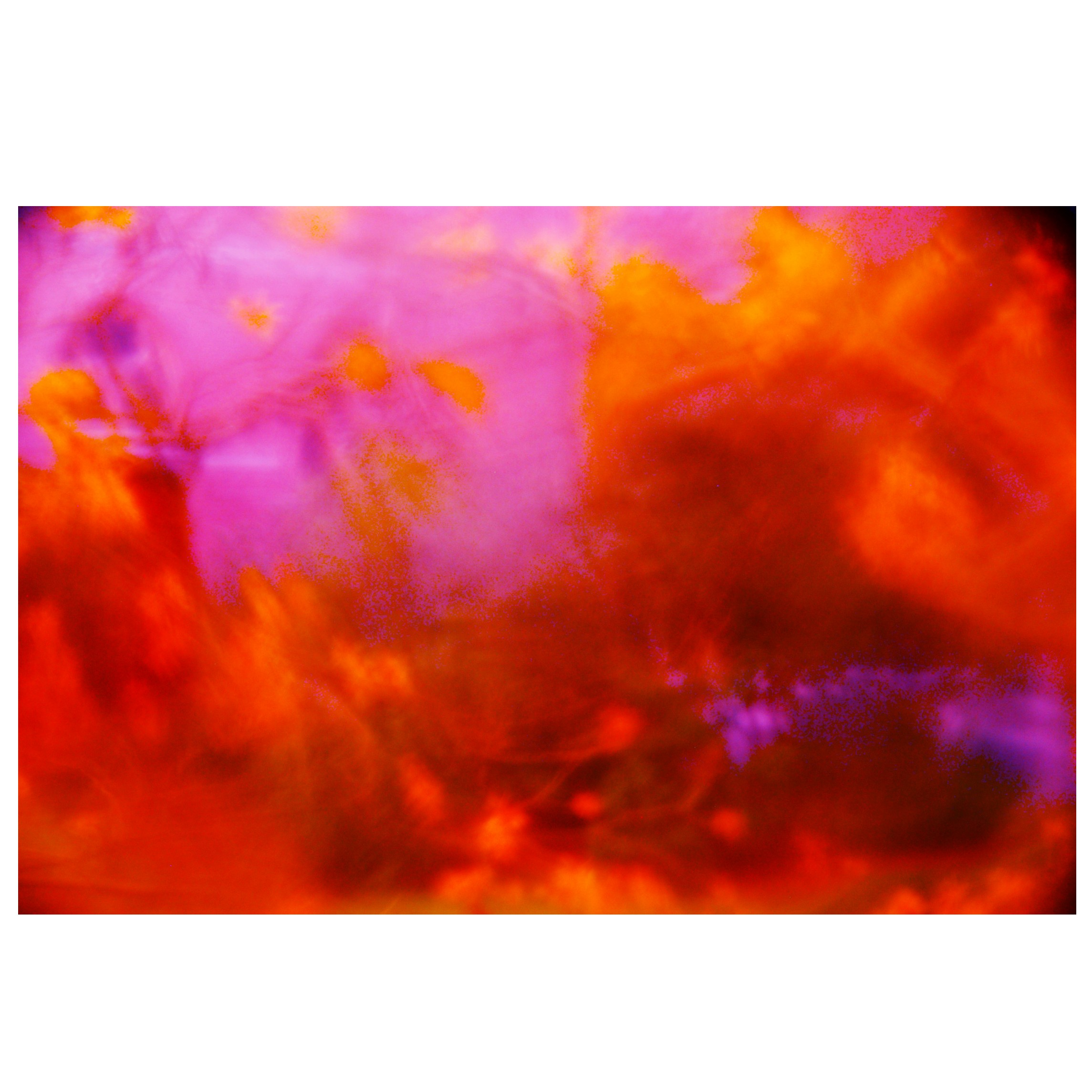 Romy Doornkamp - PicsArt_03-13-04.28.45.jpg
