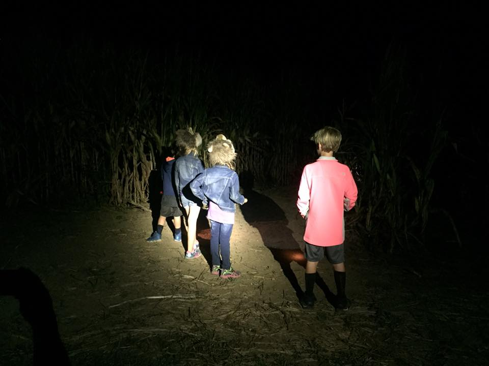 flashlight tours.jpg