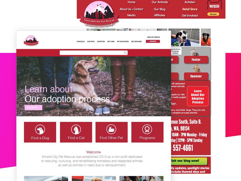 ecpr-websitev8.jpg