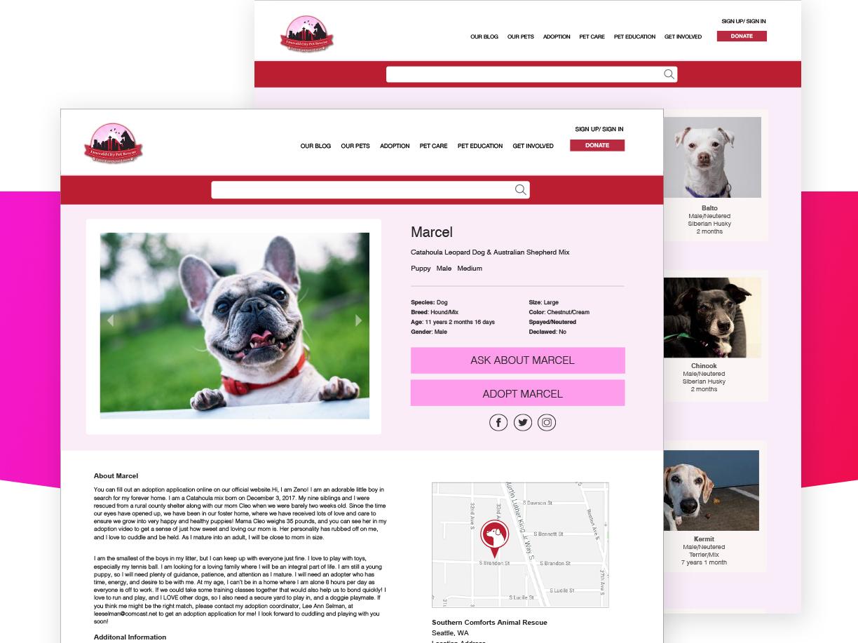 ecpr-websitev4 copy v4.jpg
