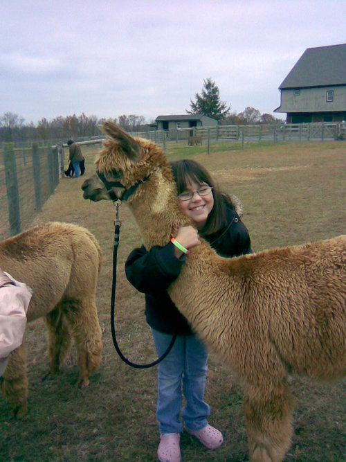 2007+meghan+alpaca.jpg