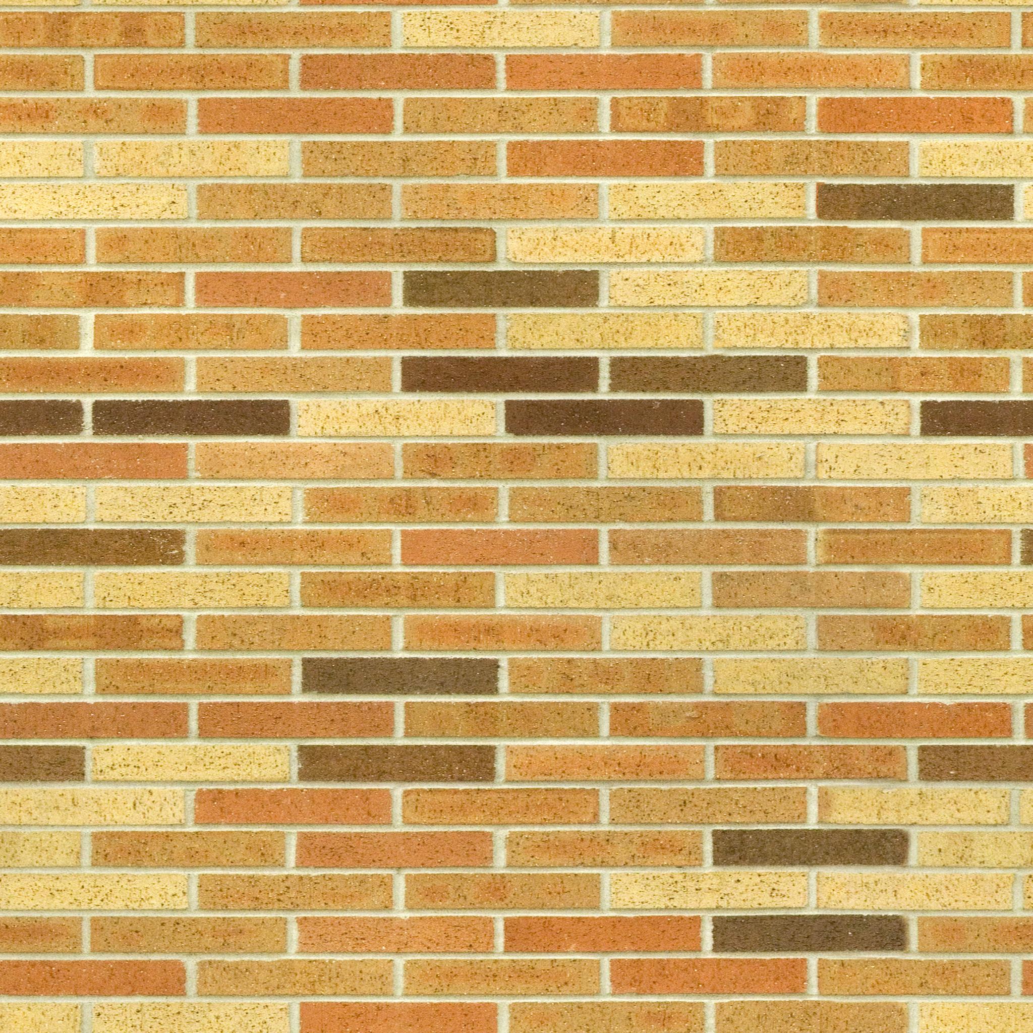 Sunny Yellow Brick.jpg