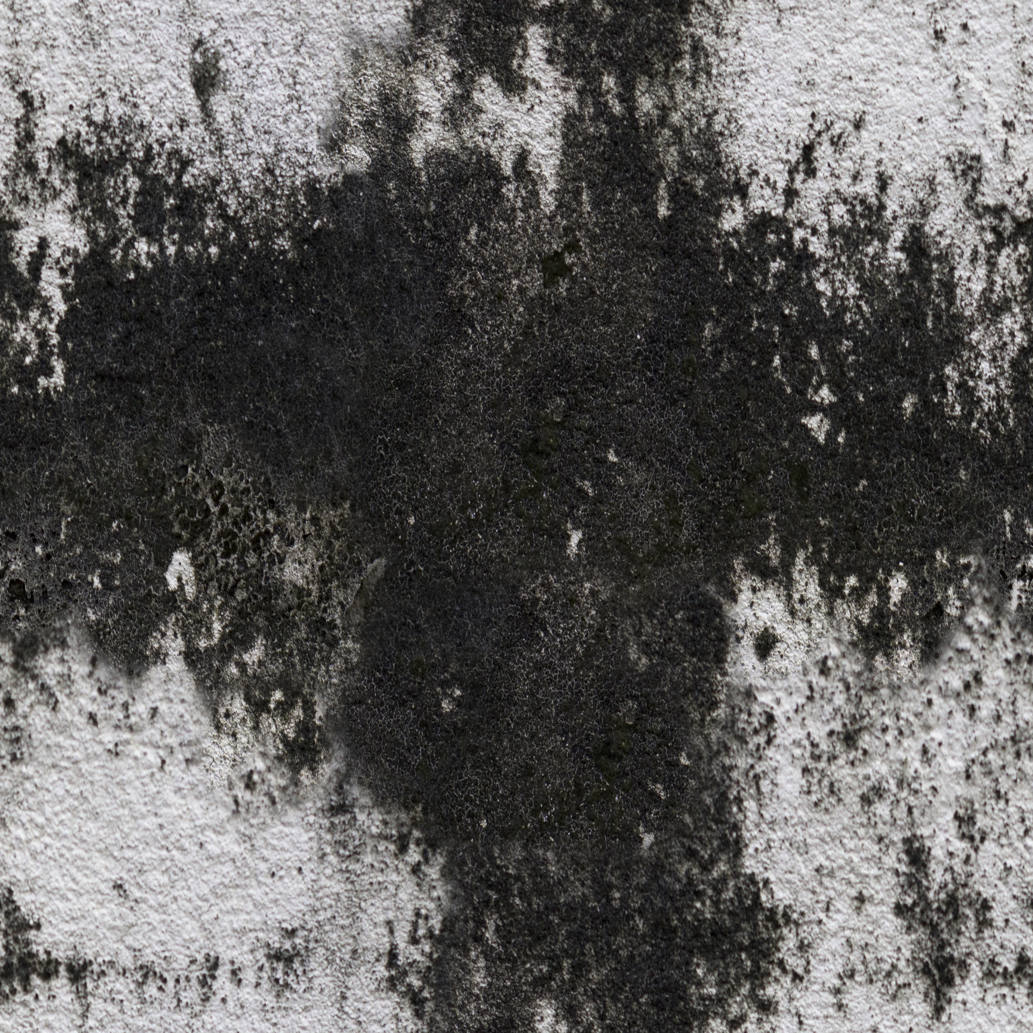 White and Black Painted Concrete.jpg