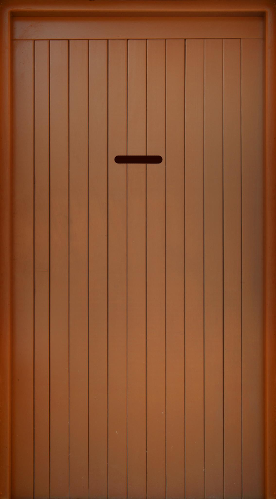Bronze Contemporary Door.jpg