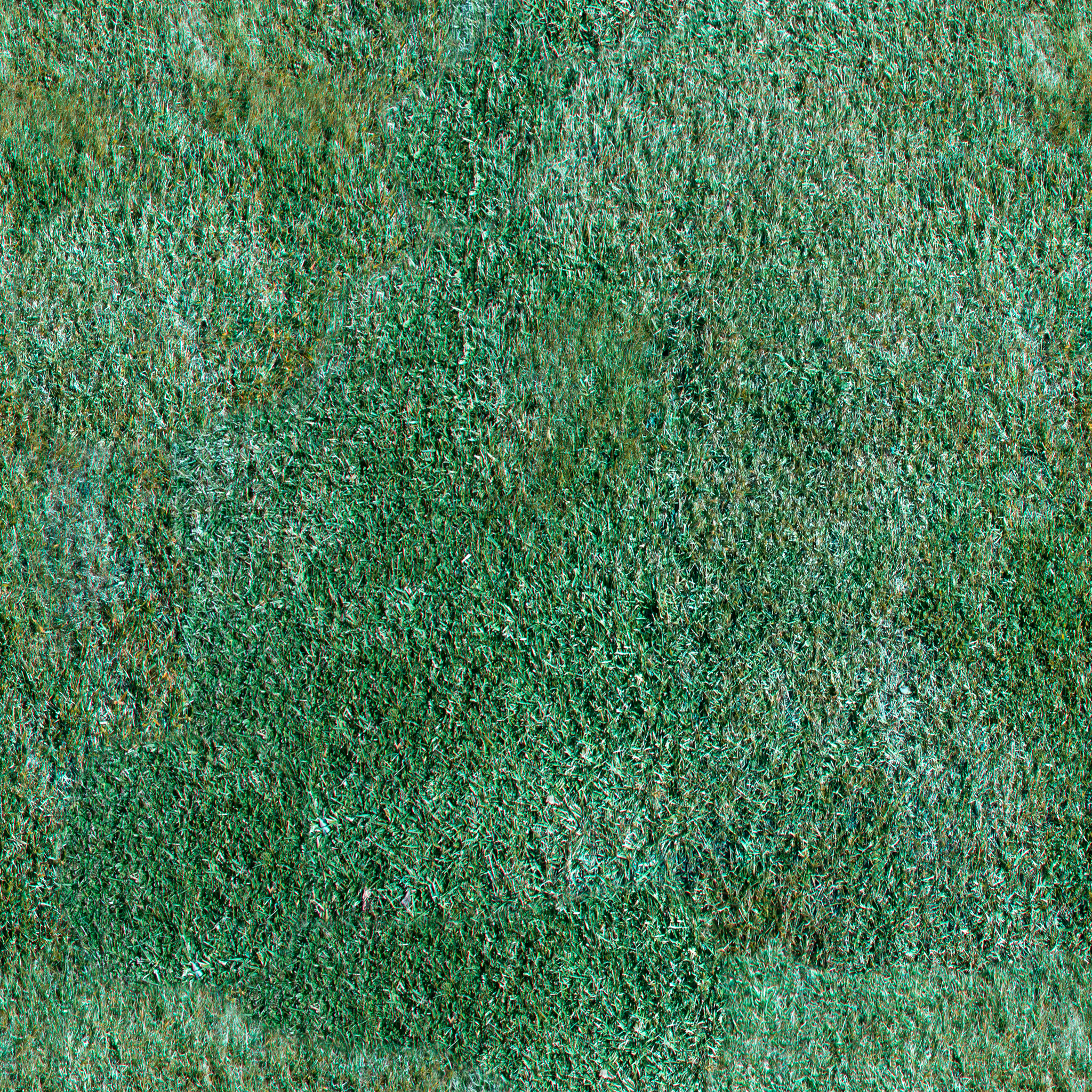 manicured-lawn.jpg