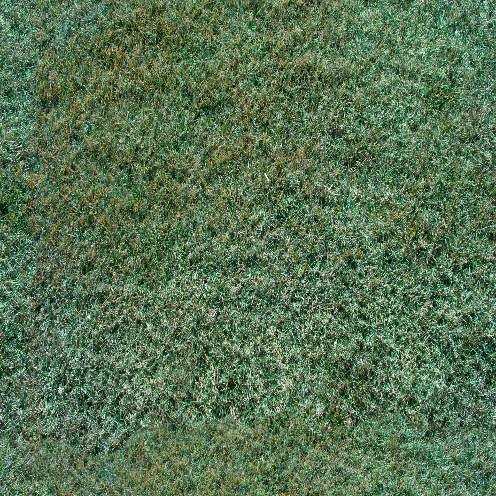 tufted-grass.jpg