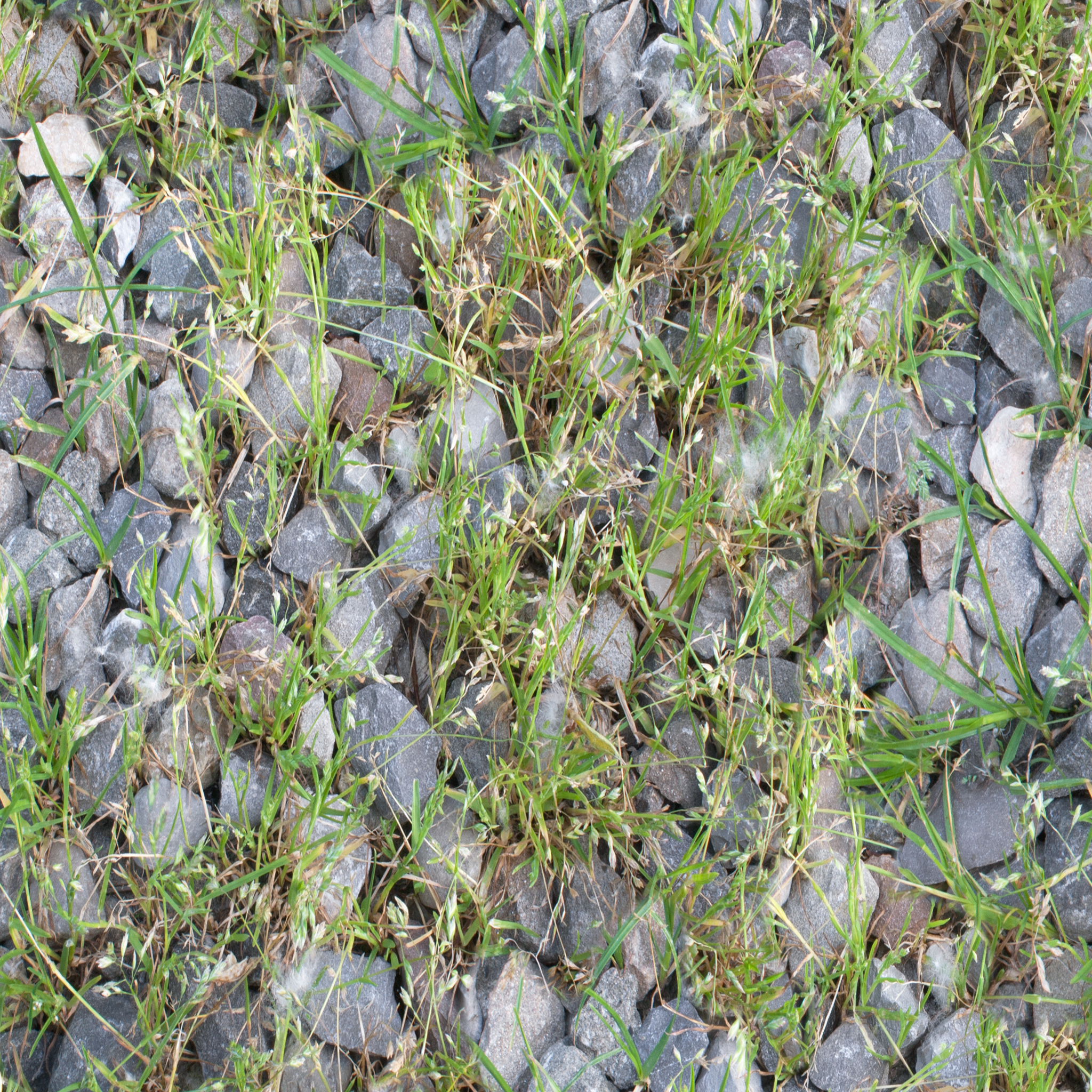 gravel-with-grass.jpg
