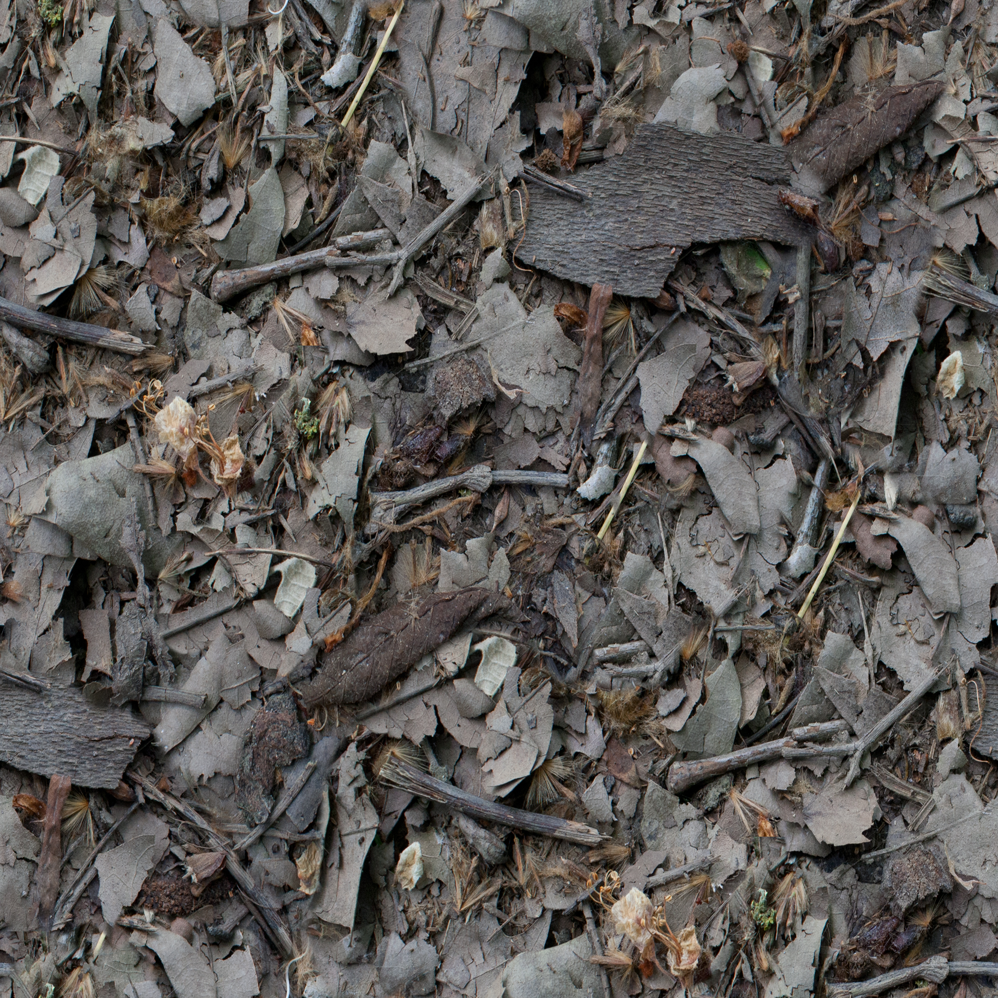 large-leaf-litter.jpg