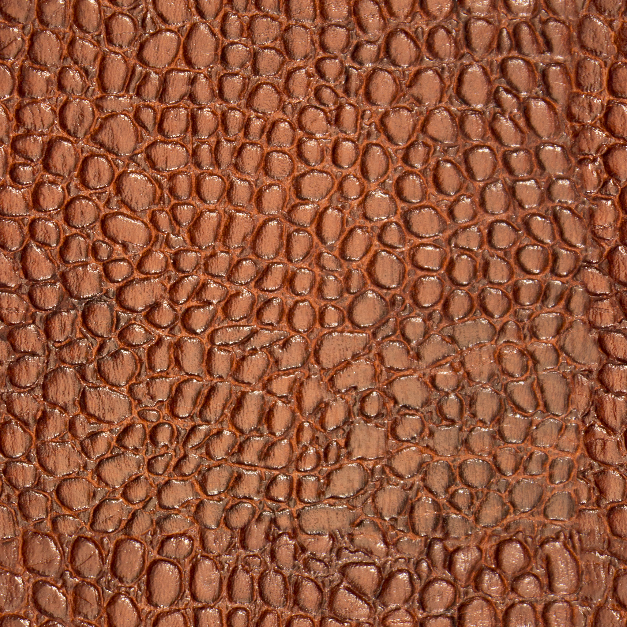 Caramel Alligator Leather.jpg