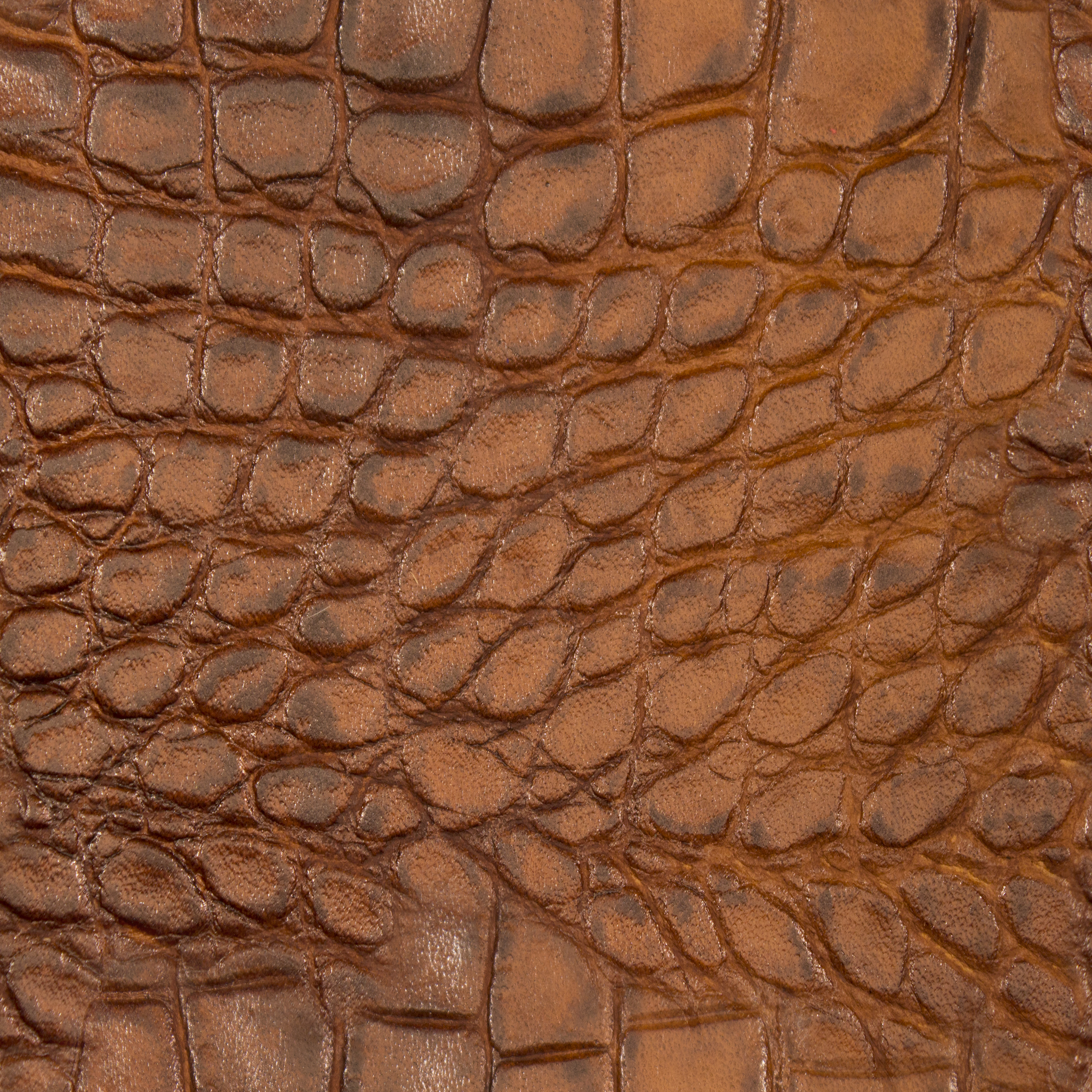 Croc Caramel Leather.jpg