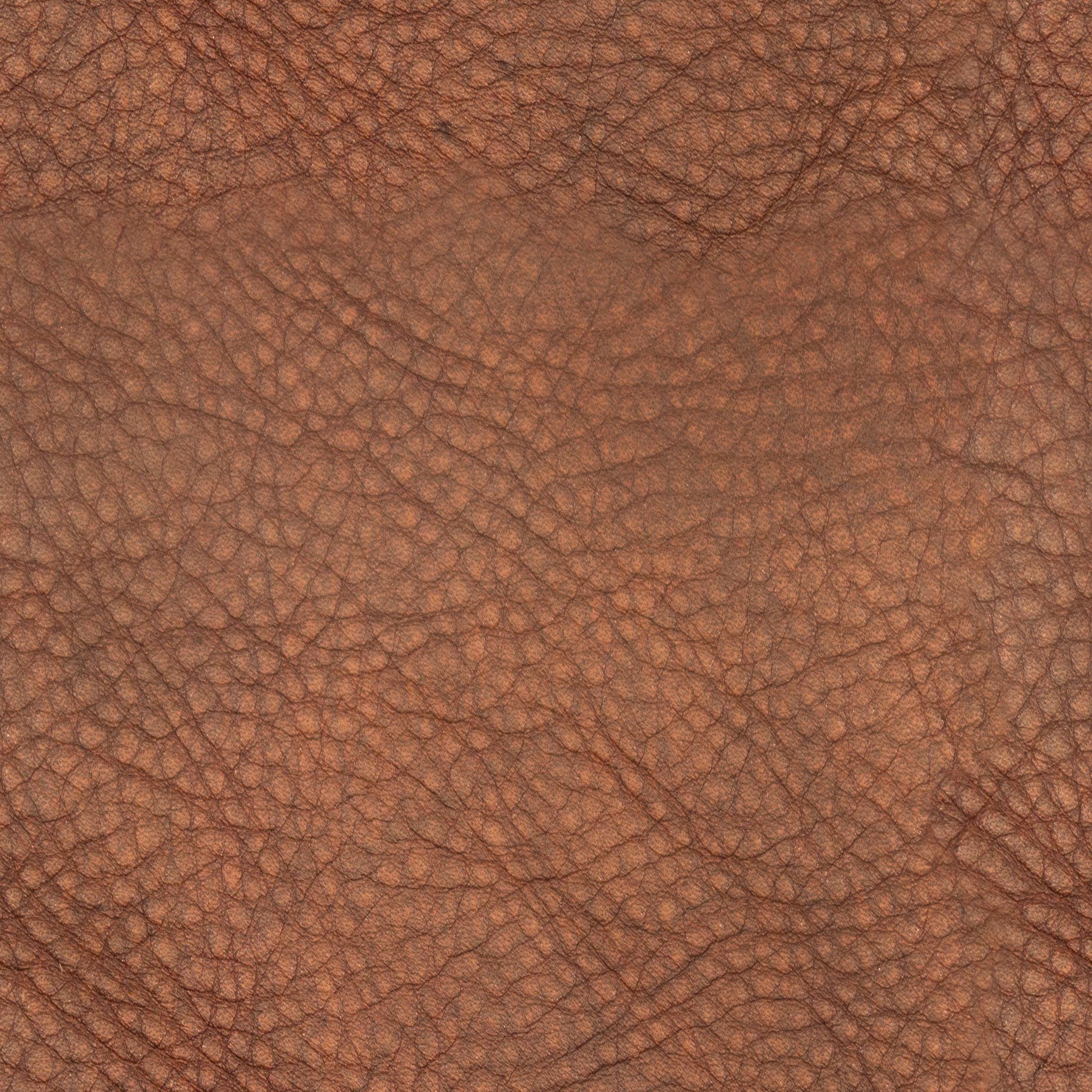 Auburn Rough Leather.jpg