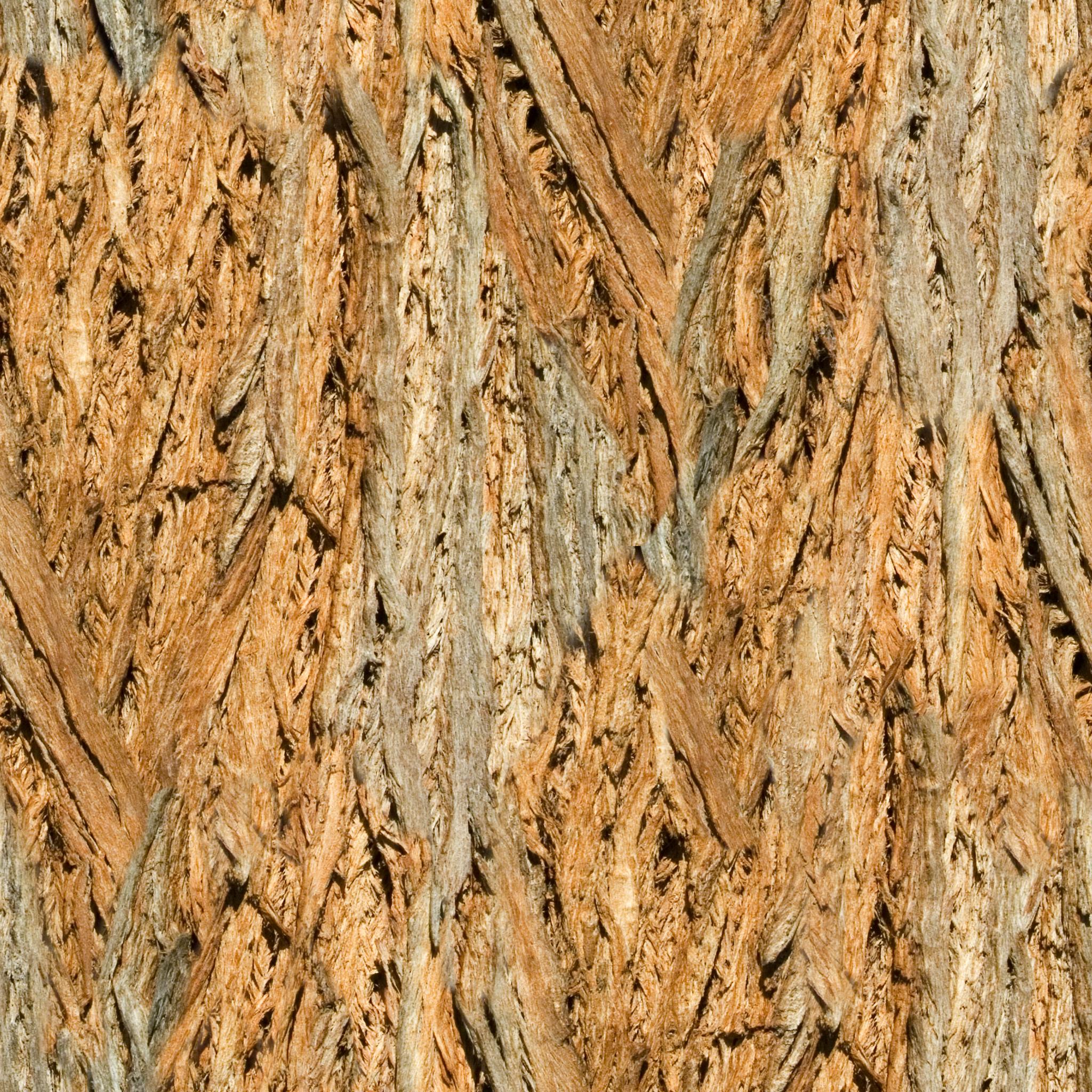 Brown Fibered Bark.jpg