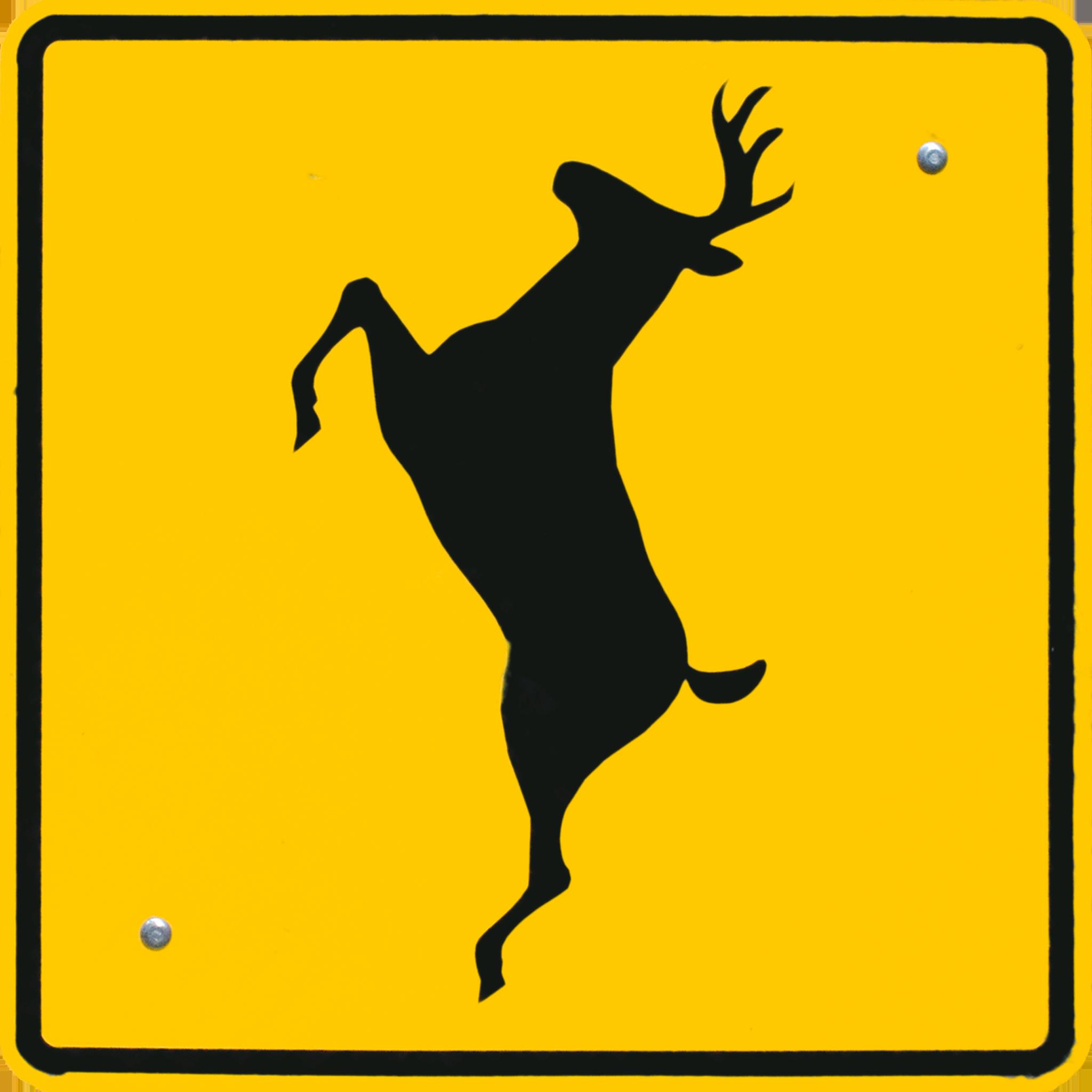 Deer Crossing.png