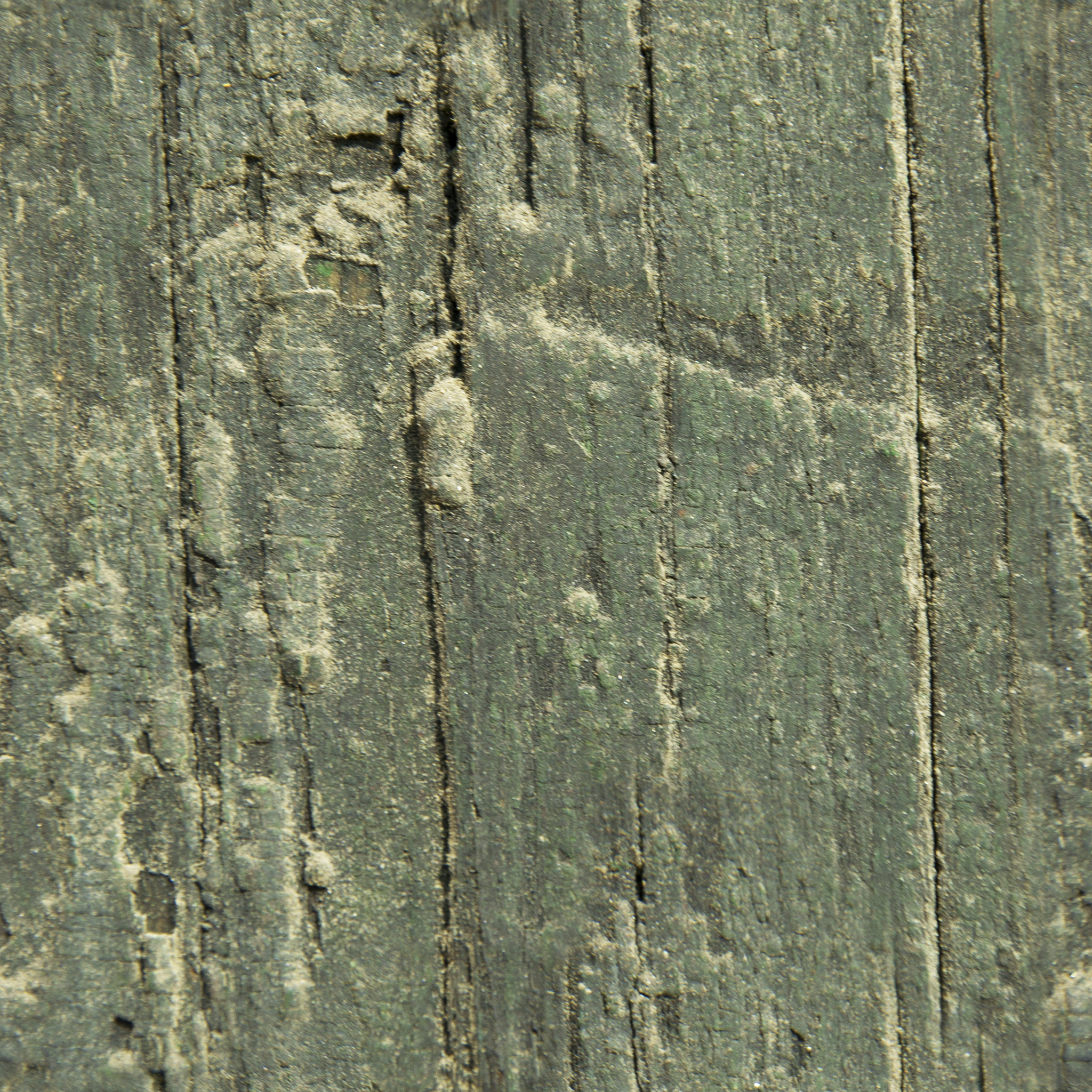Antiquated Narra Wood.jpg
