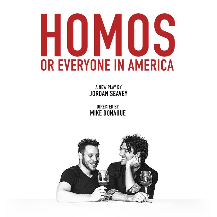 Homos or Everyone in America poster.jpg