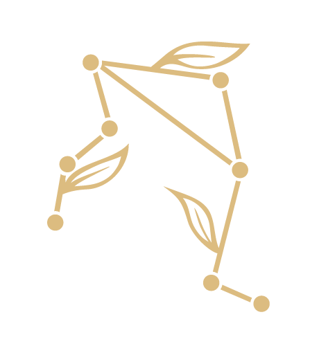 Updated-Icon-Constellation.png