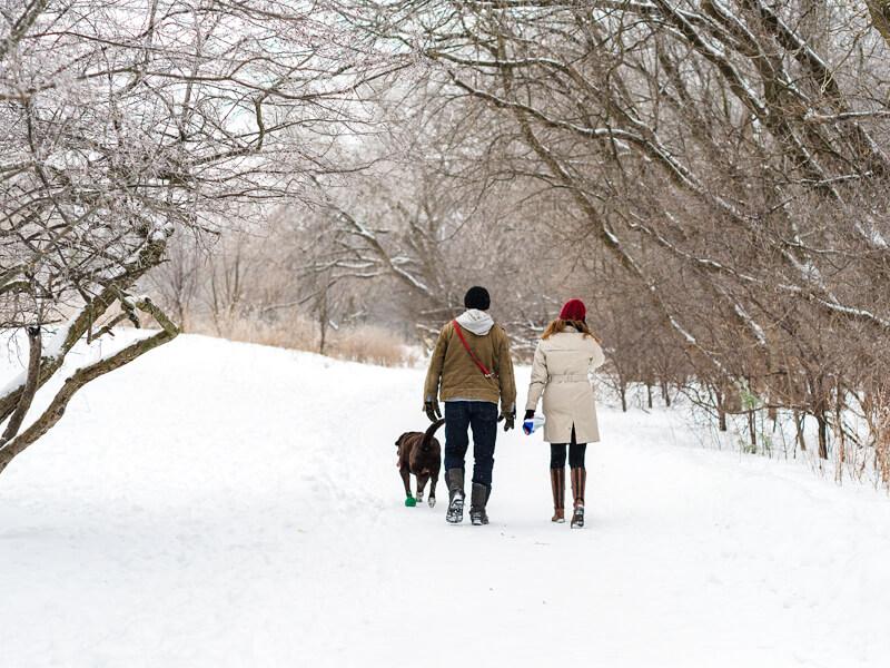 Guelph_winterwalk_800x600.jpg