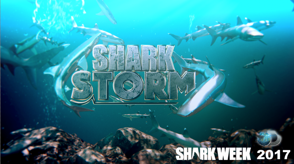 Shark storm - Are sharks social? Are there hidden complexities to their social lives? Tristan examines the structure and function of shark groups - hammerheads to lemon and whale sharks!