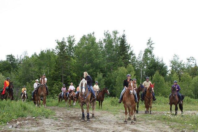 Horsebackriding through Columberia