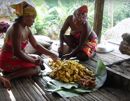 Visit & learn about the village of Embera