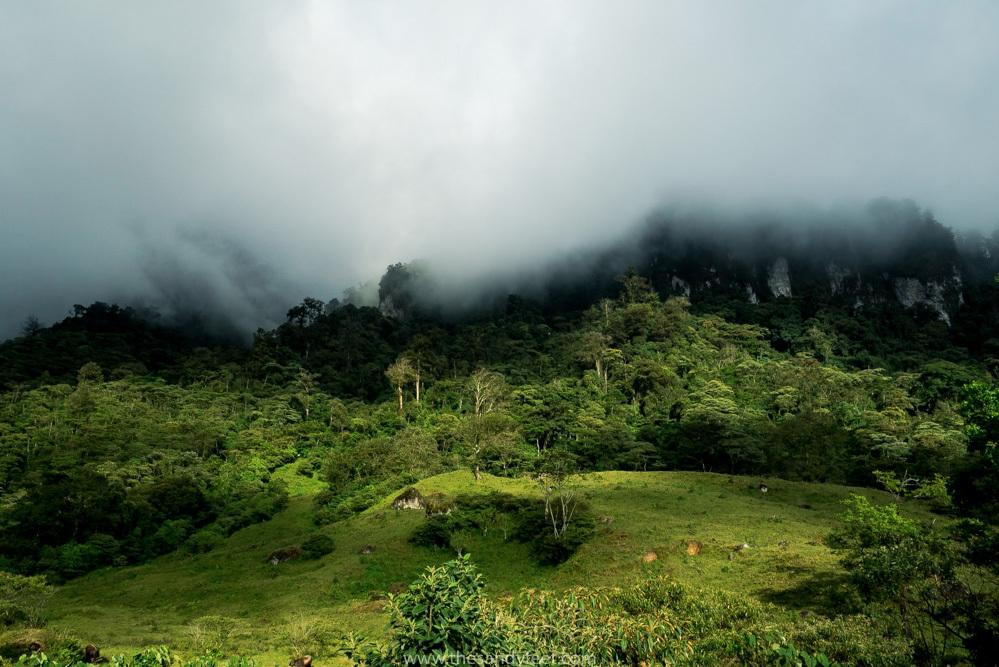 Hike the stunning wetlands