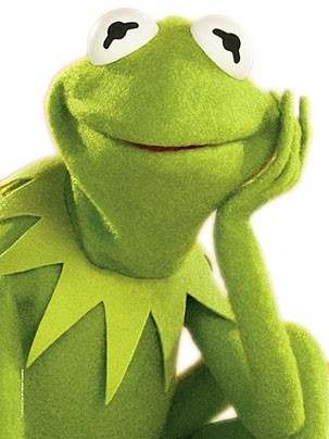 The_Blonde_Priestess_Kermit-the-Frog-the-muppets-121862_303_404.jpg